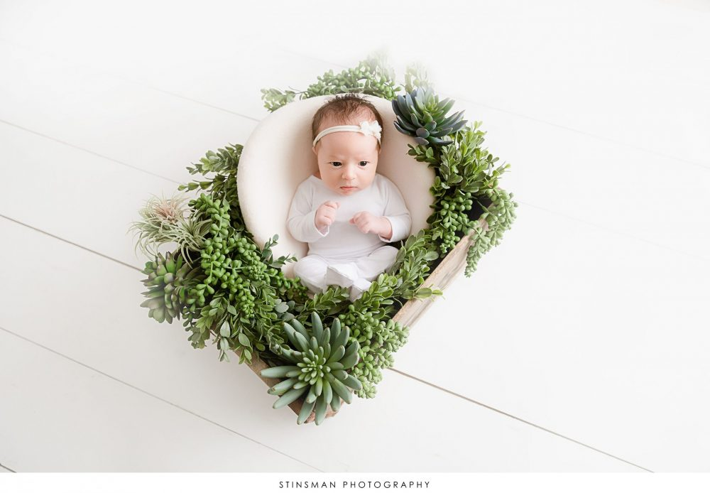baby girl in a bucket with succulents and greenery all around