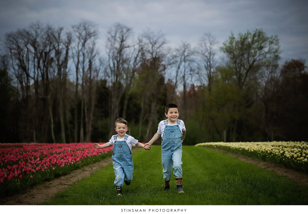 Brothers playing at their mini tulip photoshoot