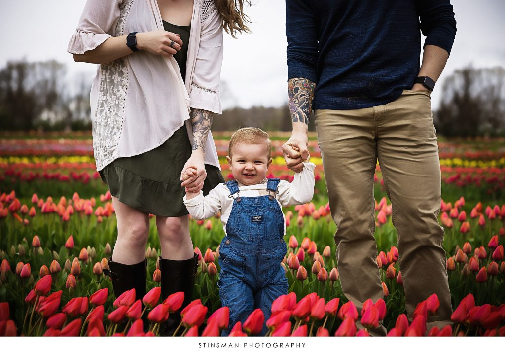 Little boy holding his parents hands at their mini tulip photoshoot